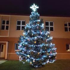 Ptenský vánoční strom