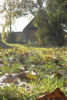Barevný ptenský podzim